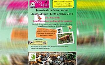 news expo oct 338-220